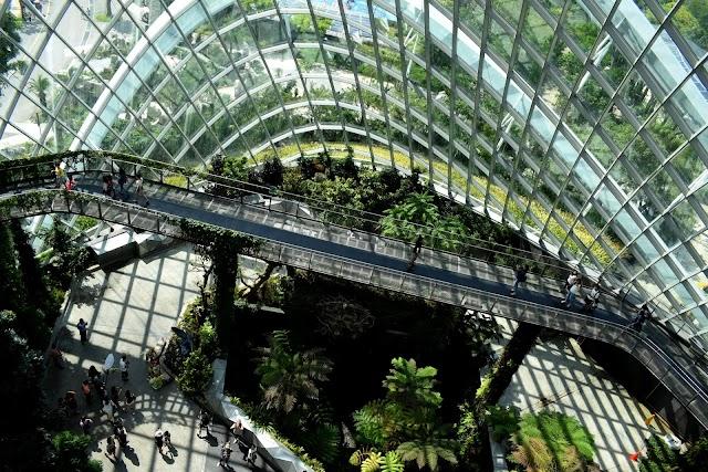 SAP acelera protección climática para alcanzar la neutralidad en carbono en 2023