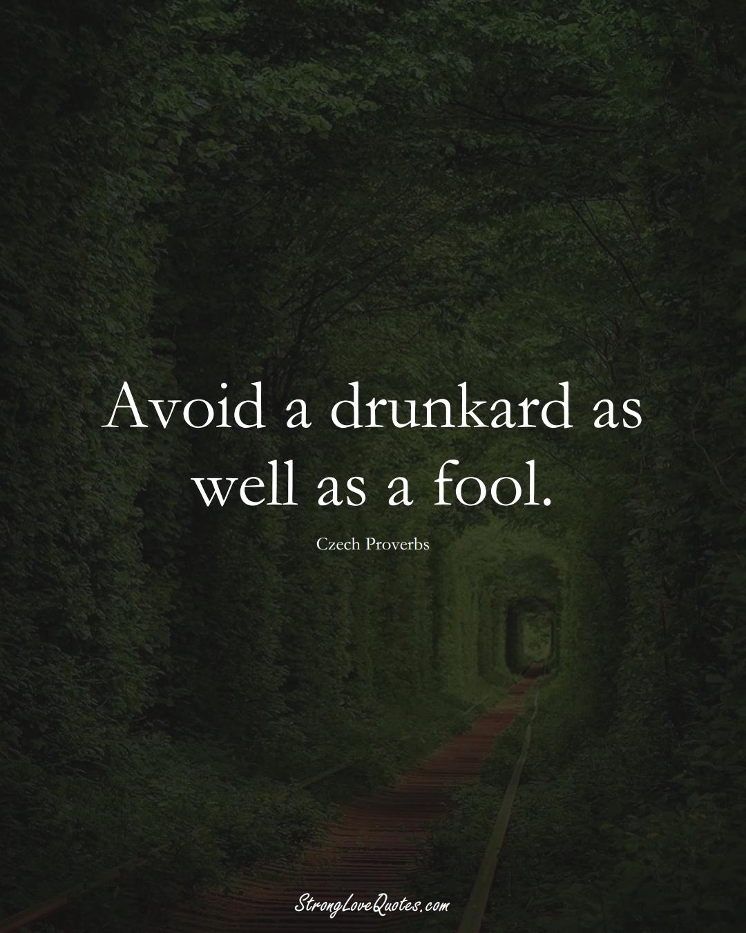 Avoid a drunkard as well as a fool. (Czech Sayings);  #EuropeanSayings