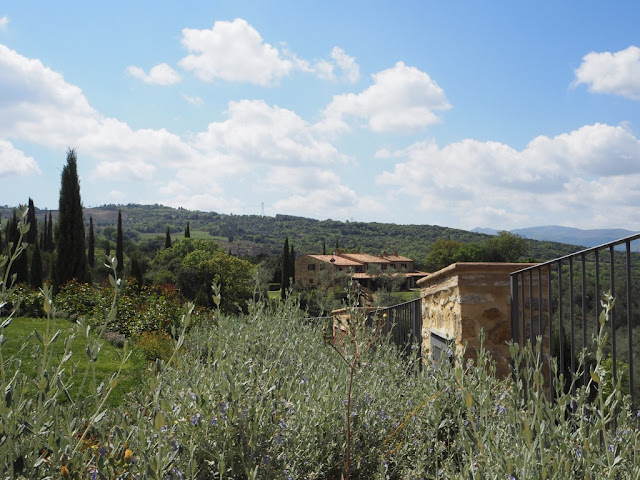 Toskánské kopce - okolí Montalcino
