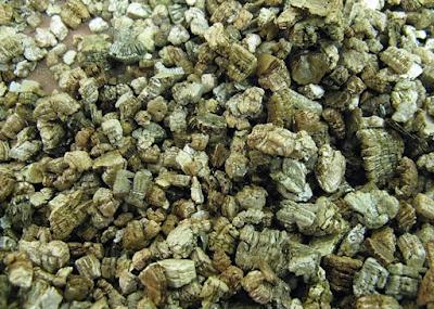 Vermiculate Asbestos, asbestosis, pneumoconiosis, mesothelioma, etiology, causes