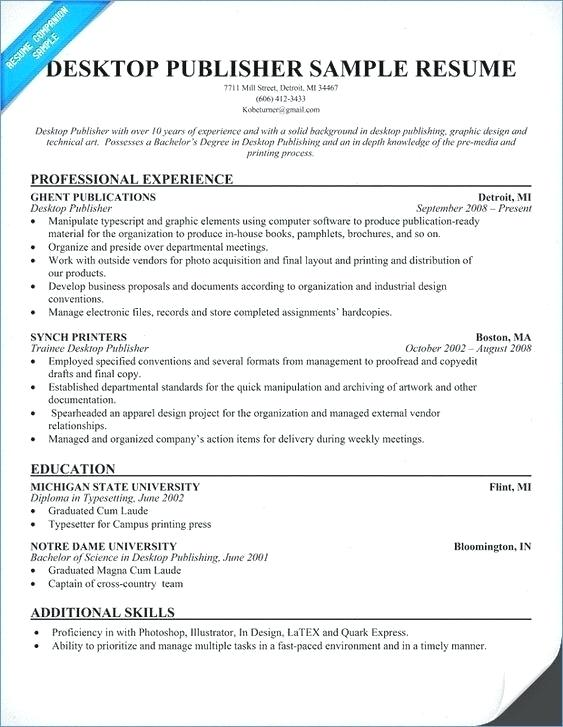 Examples Of Great Resume Resumes Objective Sample Customer Service Best