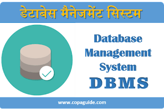 What is Data Base Management System?
