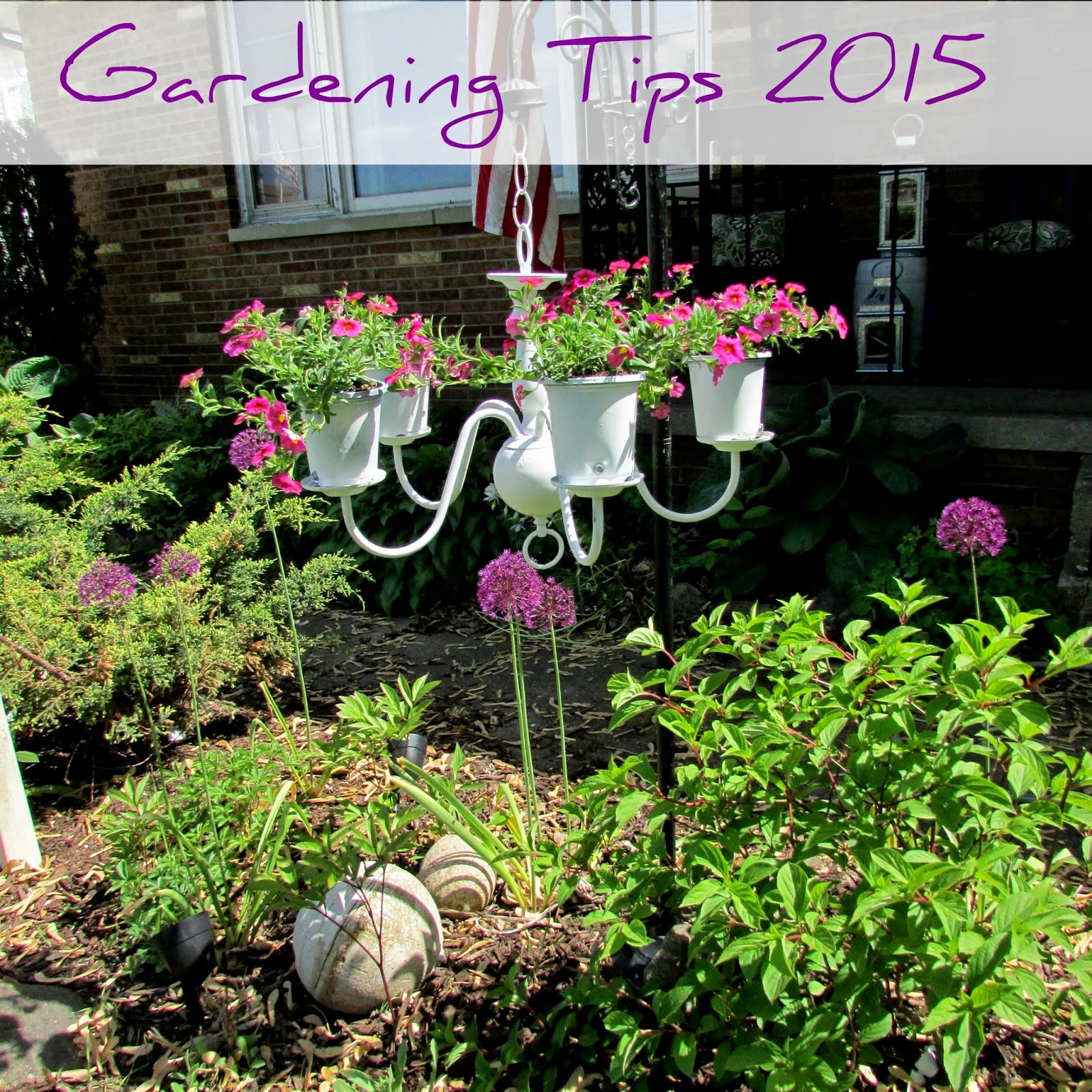 Spring Garden Tips U0026 Photos 2015