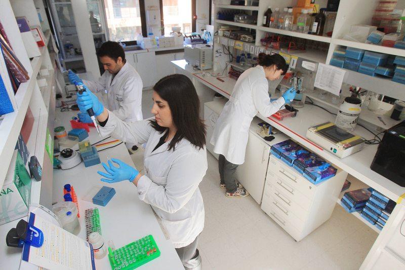 universidades están buscando doctorados