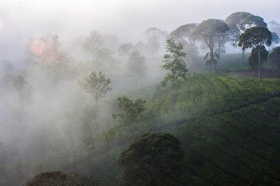 Tempat Wisata Bandung Dago