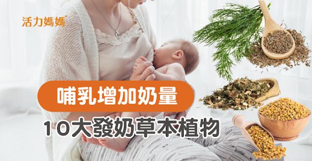【產後哺乳追奶、增加奶量】10大草本發奶植物超有效!