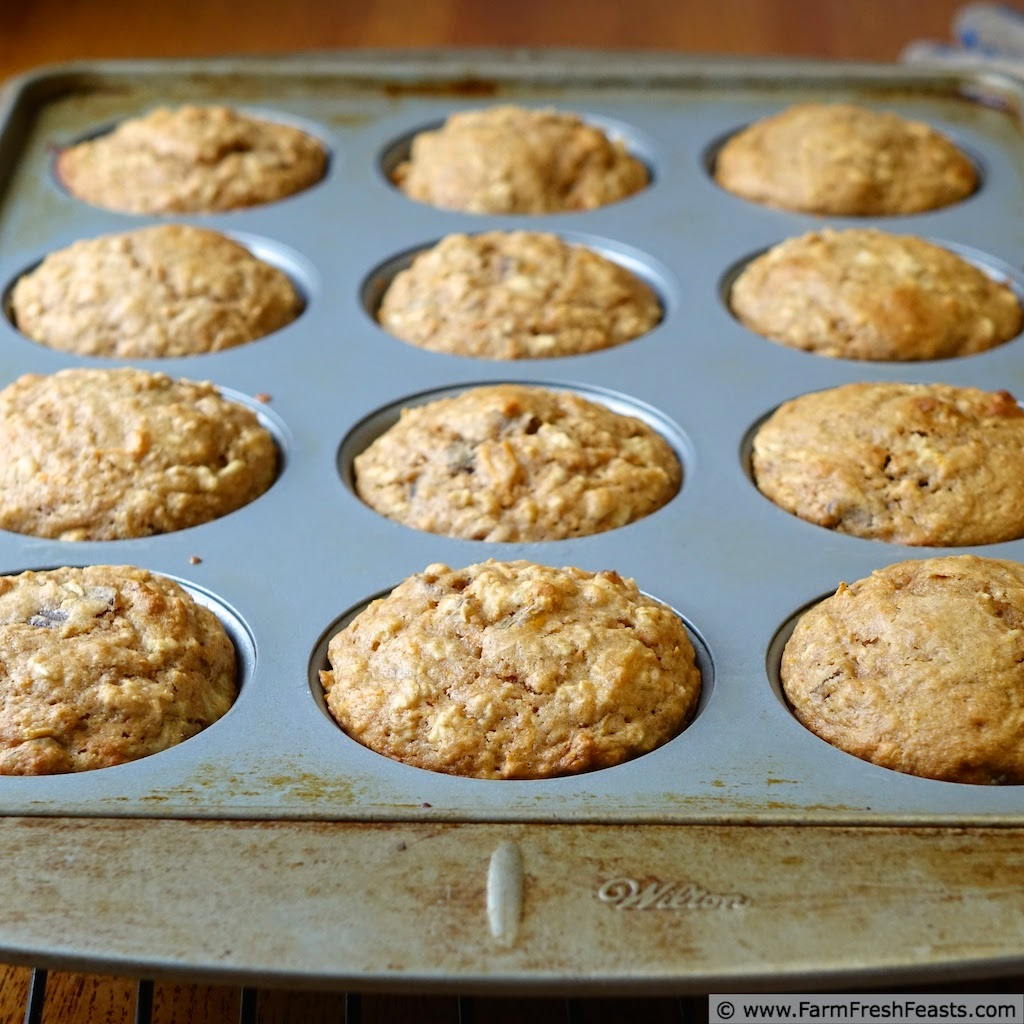 healthy whole grain sugar free carrot cake muffins in the pan after baking