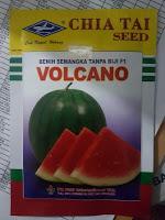 semangka volcano, jual benih semangka, jual benih cap Kapal Terbang, budidaya semangka, toko pertanian, toko online, lmga agrp