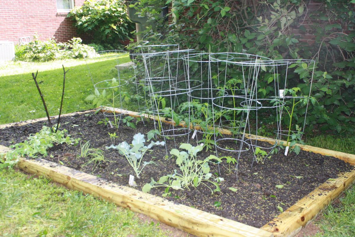 Small Vegetable Garden Design Small Vegetable Gardens Vegetable