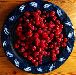 this year we have a massive raspberry harvest