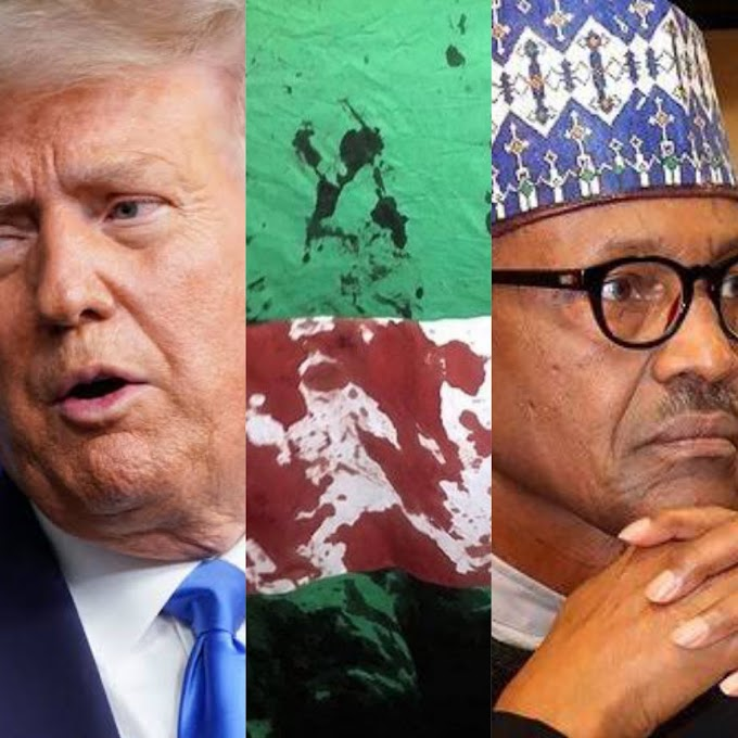 US Govt finally reacts to shootings of #EndSARS protesters by Nigerian military