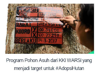 Program pohon asuh