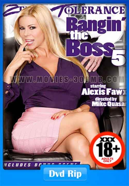 [18+] Bangin The Boss 5 2016 DVDRip 700MB xXx Poster