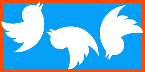 Three Twitter birds