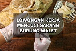 Lowongan Kerja Mencuci & Membersihkan Sarang Walet Pontianak