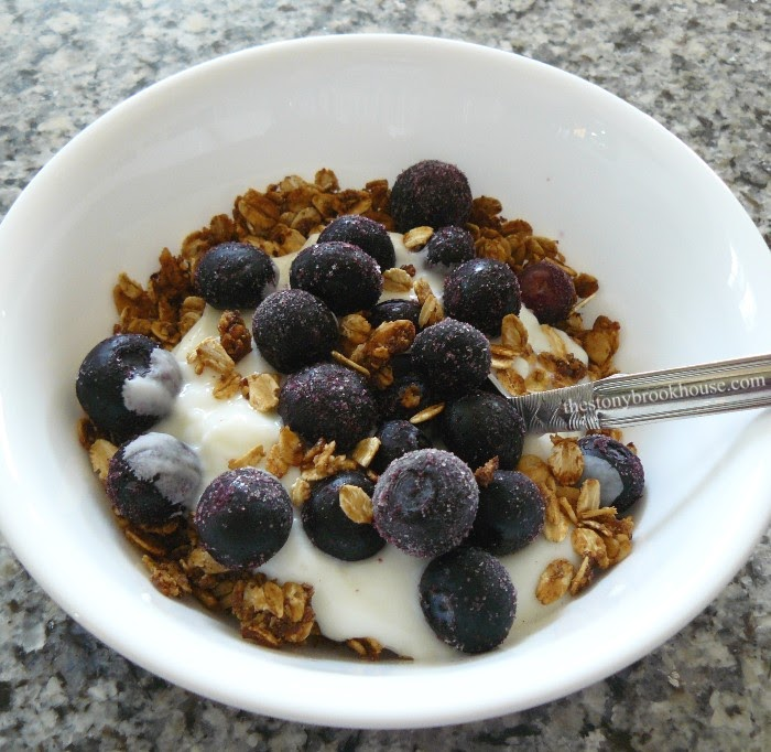 Granola with yogurt and blueberry lunch