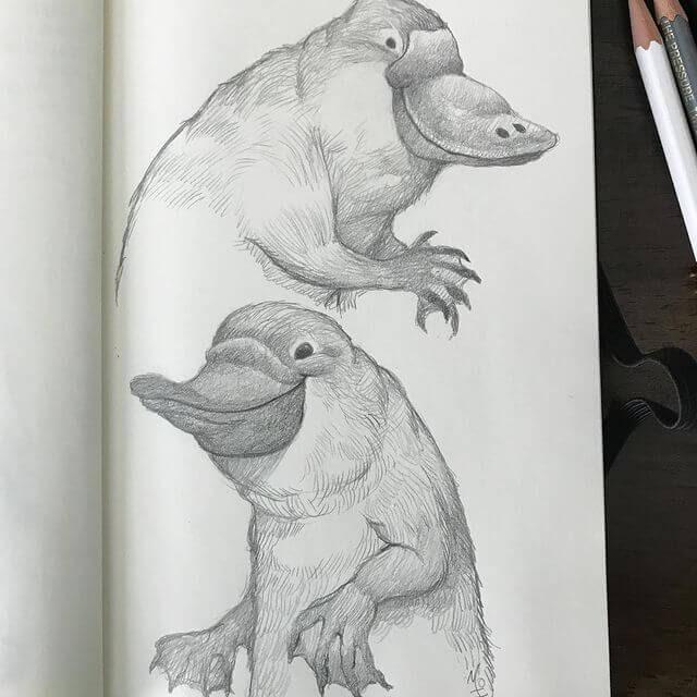 07-The-playful-platypus-Dave-Mottram-www-designstack-co