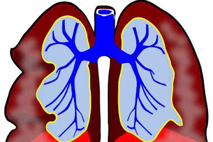 Dampak Negatif Oksigen Untuk Kesehatan, Jika Dihirup Berlebihan