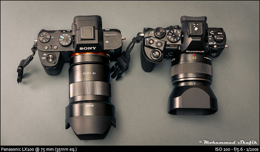 Fast 50mm Shoot Out: MFT vs FF (or why I bought the Sony A7II and a single FE lens)
