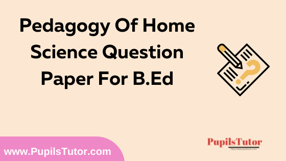 Pedagogy Of Home Science Question Paper For B.Ed 1st And 2nd Year And All The 4 Semesters In English, Hindi And Marathi Medium Free Download PDF   Pedagogy Of Home Science Question Paper In English   Pedagogy Of Home Science Question Paper In Hindi   Pedagogy Of Home Science Question Paper In Marathi
