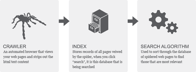 crawl-index-search