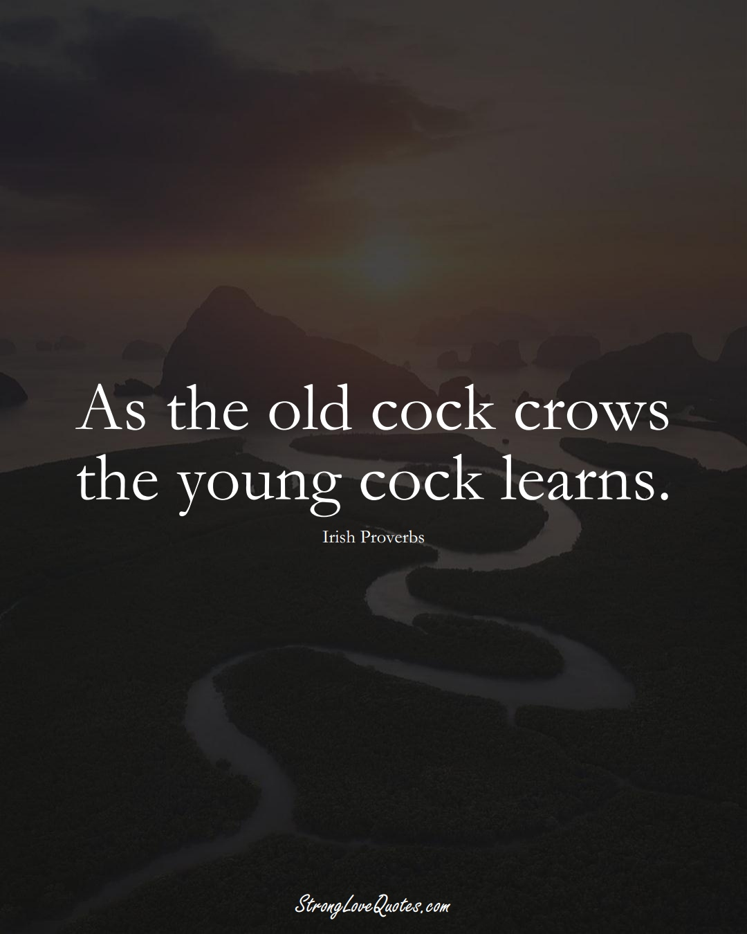 As the old cock crows the young cock learns. (Irish Sayings);  #EuropeanSayings