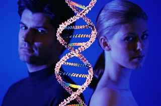 genetik test