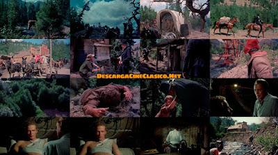 Fotogramas de la película: El árbol del ahorcado / The Hanging Tree