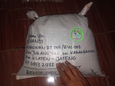 Benih Padi TRISAKTI Pesanan ASWANDI   Klaten, Jateng  (Sesudah di Packing)