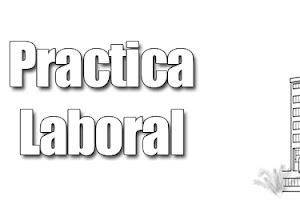 Experiencia de Practica Laboral Parte 2 [Final]