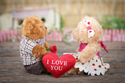Valentines day gift ideas for her, Valentine day ideas for couples and gifts for him, teddy bear day