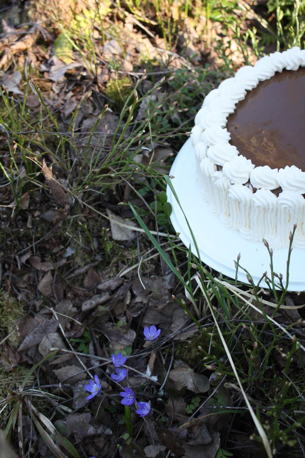 kakku kinuskikakku kinuski leivonta ruoka cake toffee fudge