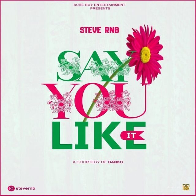 AUDIO l STEVE RNB - SAY YOU LIKE IT l Download New song