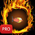 Hot Bird Pro Free Download