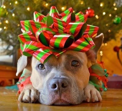 image de Noël facebook