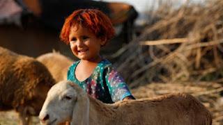 Muslims worldwide will celebrate Eid al-Adha also known as the Festival of Sacrifice amid a coronavirus pandemic