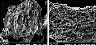 struktur pori karbon aktif