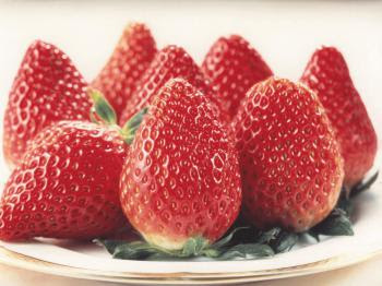 Nohime Strawberries from Gifu