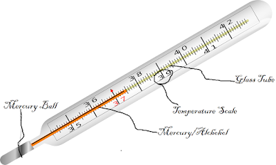 Descriptive Image of Thermometer