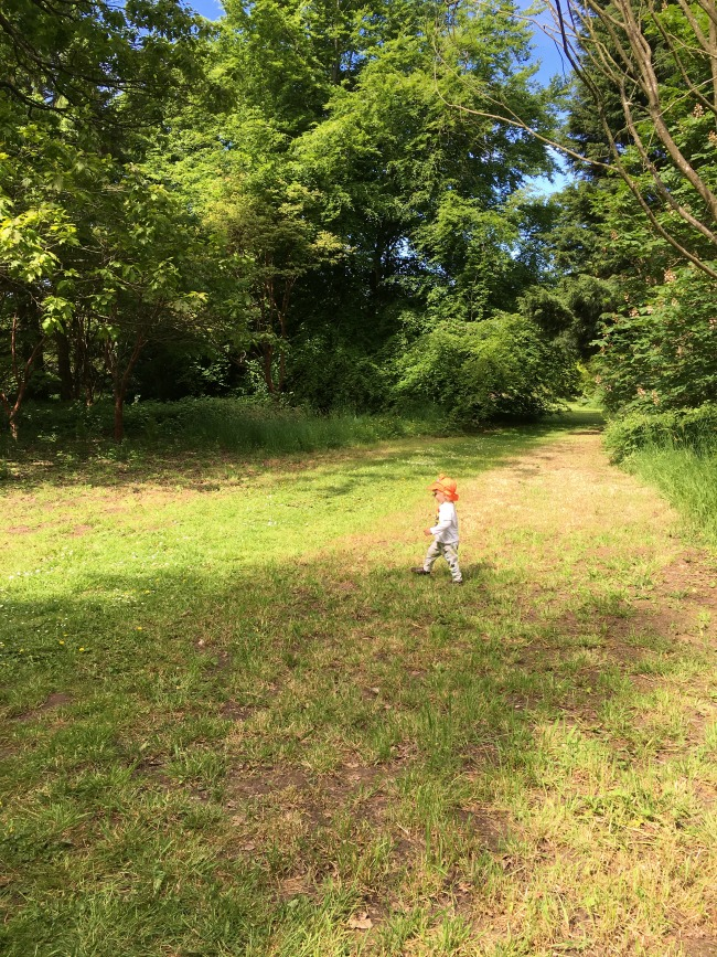toddler-running-across-grass-Dyffryn-Gardens
