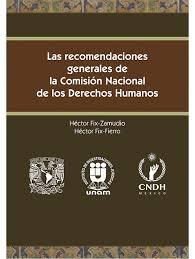 EL ESQUEMA DE CORRUPCION Y DEFICIENCIAS DE LA COMISION NACIONAL DE  DERECHOS HUMANOS, UN RIESGO LATENTE PARA LAS VÍCTIMAS EN MEXICO