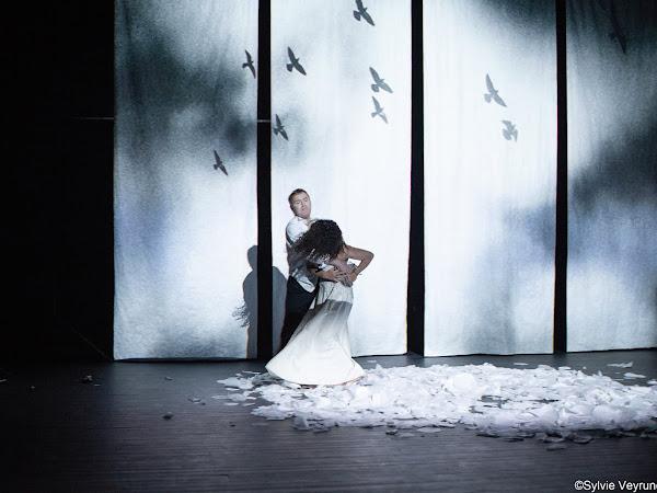 Mlle Julie #meurtre d'âme de Moni Grégo d'après August Strindberg