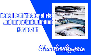 [Full] 17 Benefits of Mackerel Fish and Important Nutrition for health