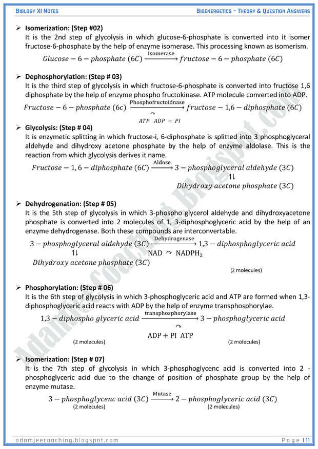 bioenergetics-descriptive-question-answers-biology-11th