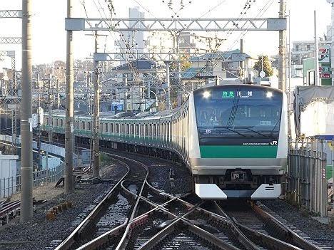 【ダイヤ改正で2本だけ新設!】E233系の特急 川越行き