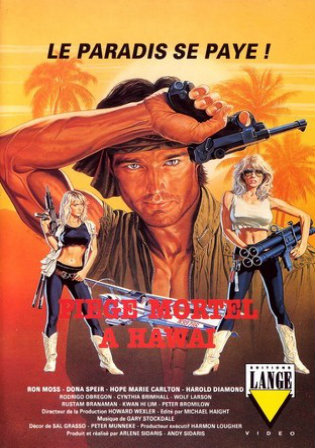 18+ Hard Ticket To Hawaii 1987 BRRip 300Mb UNRATED Hindi Dual Audio 480p