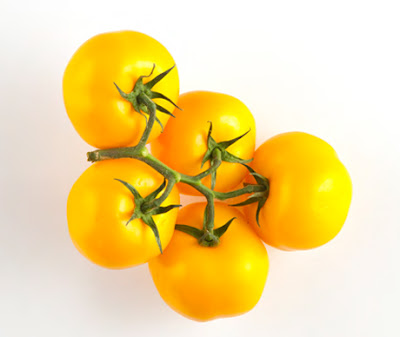 Colors of Tomatoes - Yellow Tomato