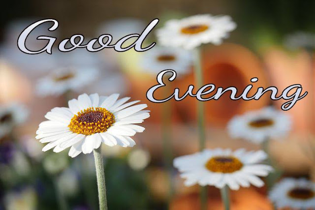 Good evening image wishes download