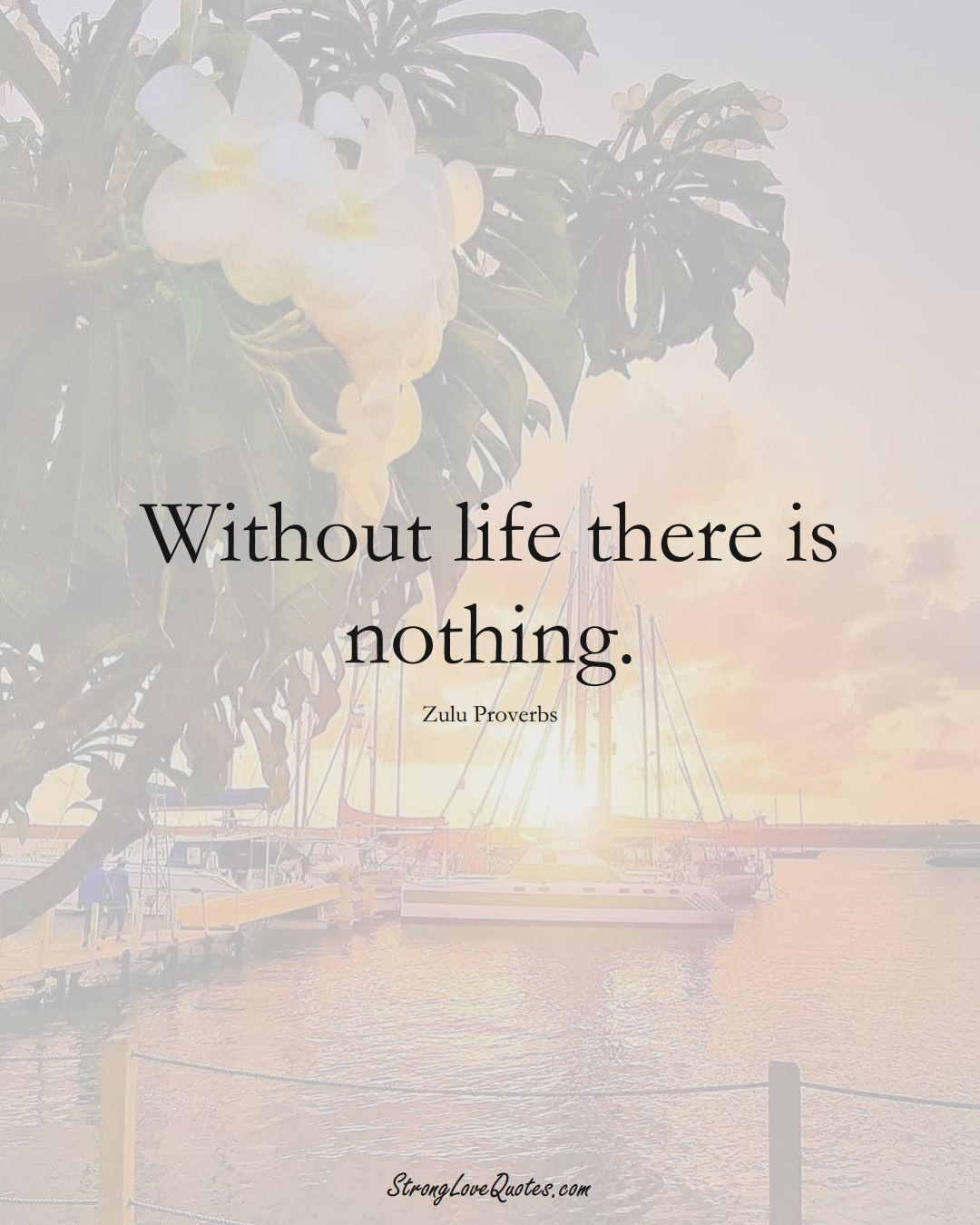 Without life there is nothing. (Zulu Sayings);  #aVarietyofCulturesSayings