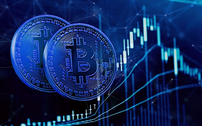 Crypto Trading Or Real Estate Trading – Which One Should You Do?